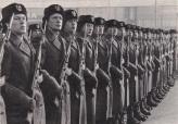 חיילים פולנים. נאמנות לעם או לשליטים?